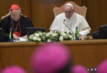 Comprender y servir a los pueblos de la Amazonía, pidió el Papa Francisco