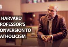Profesor ateo de Harvard se convierte por intercesión de la Virgen María3