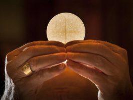 Papa: La misa de Santa Marta en vivo todos los días