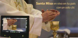 santa misa en vivo