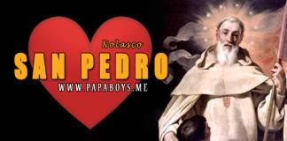 San Pedro Nolasco, Presbítero y Fundador