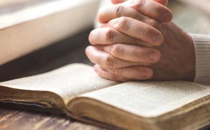 Evangelio del día y Comentario de hoy (25 de Junio)