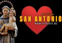 San Antonio de Padua, Presbítero y Doctor e la Iglesia