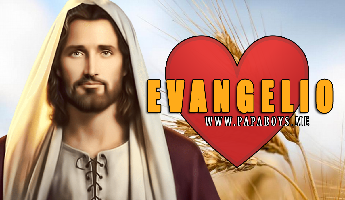 Evangelio, 4 de Julio de 2020