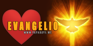 Evangelio, 10 de Julio de 2020