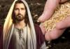 Evangelio del día y Comentario, 19 de Septiembre de 2020