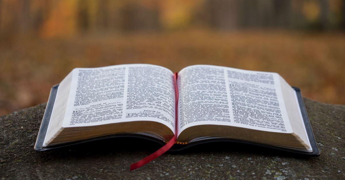 Evangelio del día, 20 de Noviembre de 2020